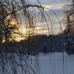 Зимние нити